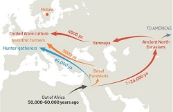 Deep origins: early Europe
