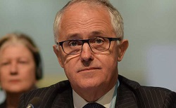 turnbull_malcolm-turnbull-headshot_250